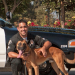 Prinz Police Dog